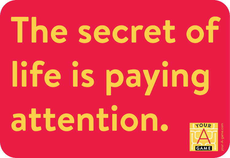 The secret of life is paying attention.